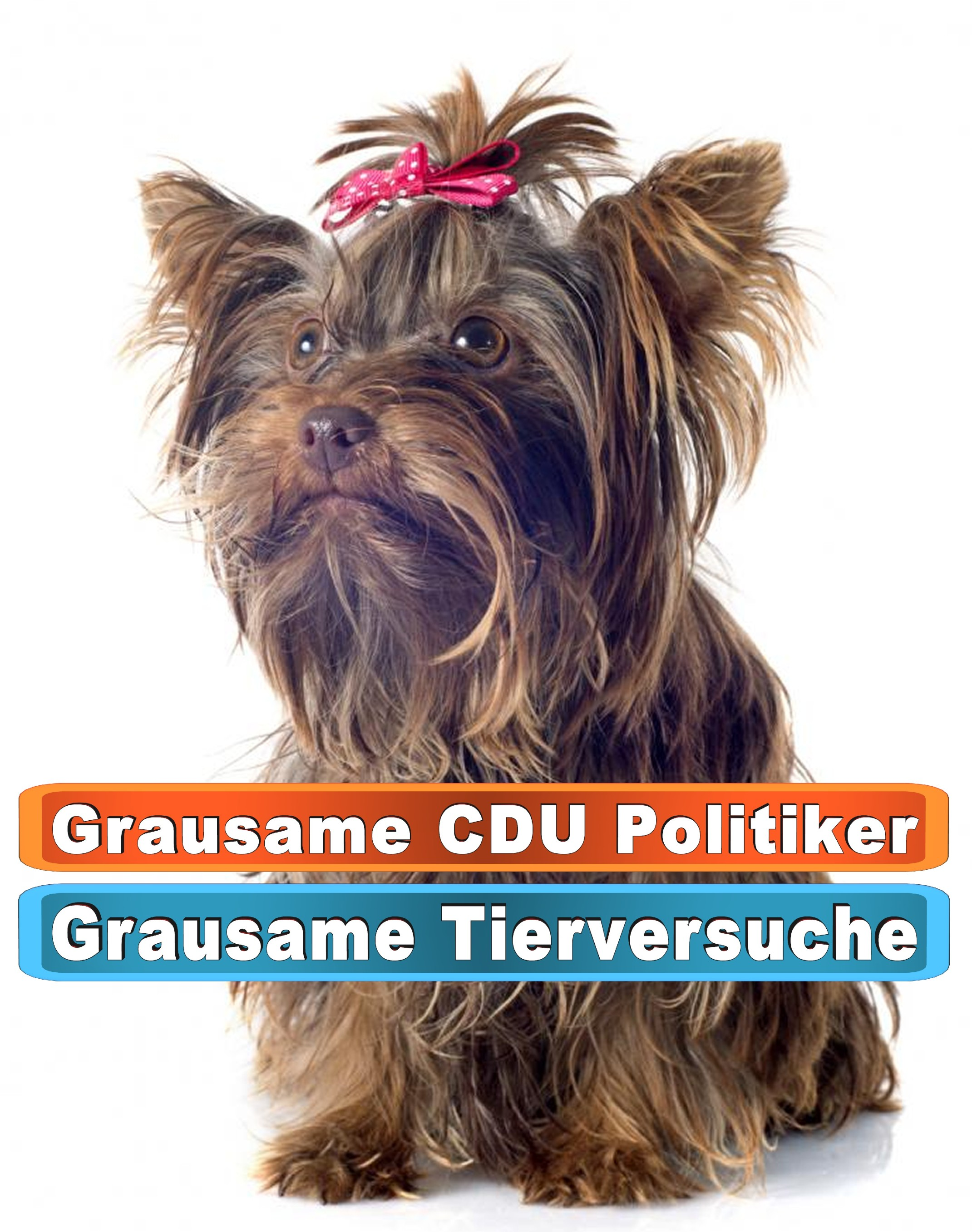 Hunde Outdoor Amazon Ebay Google Shopping