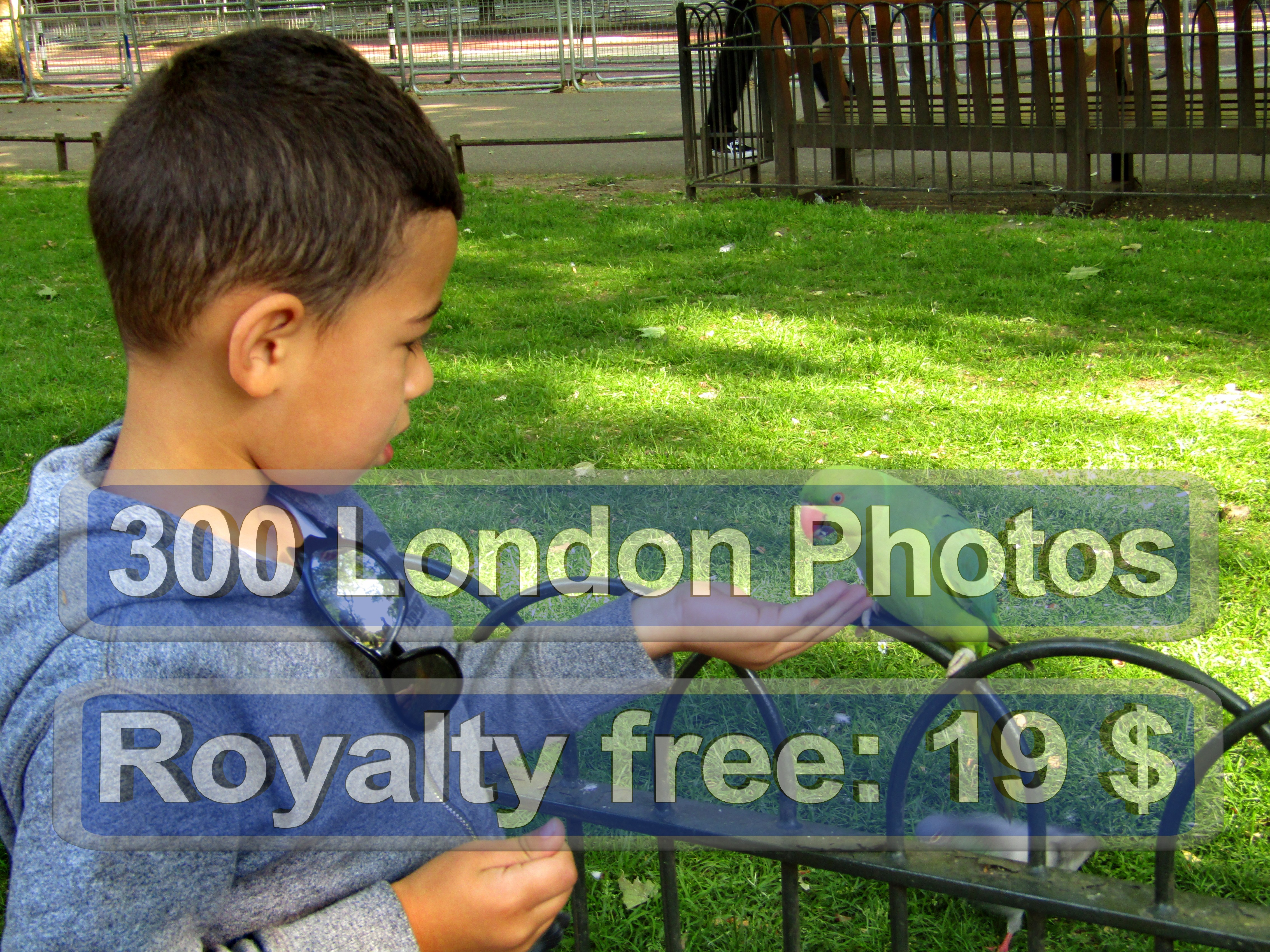 London Drugs Photo Print Quality