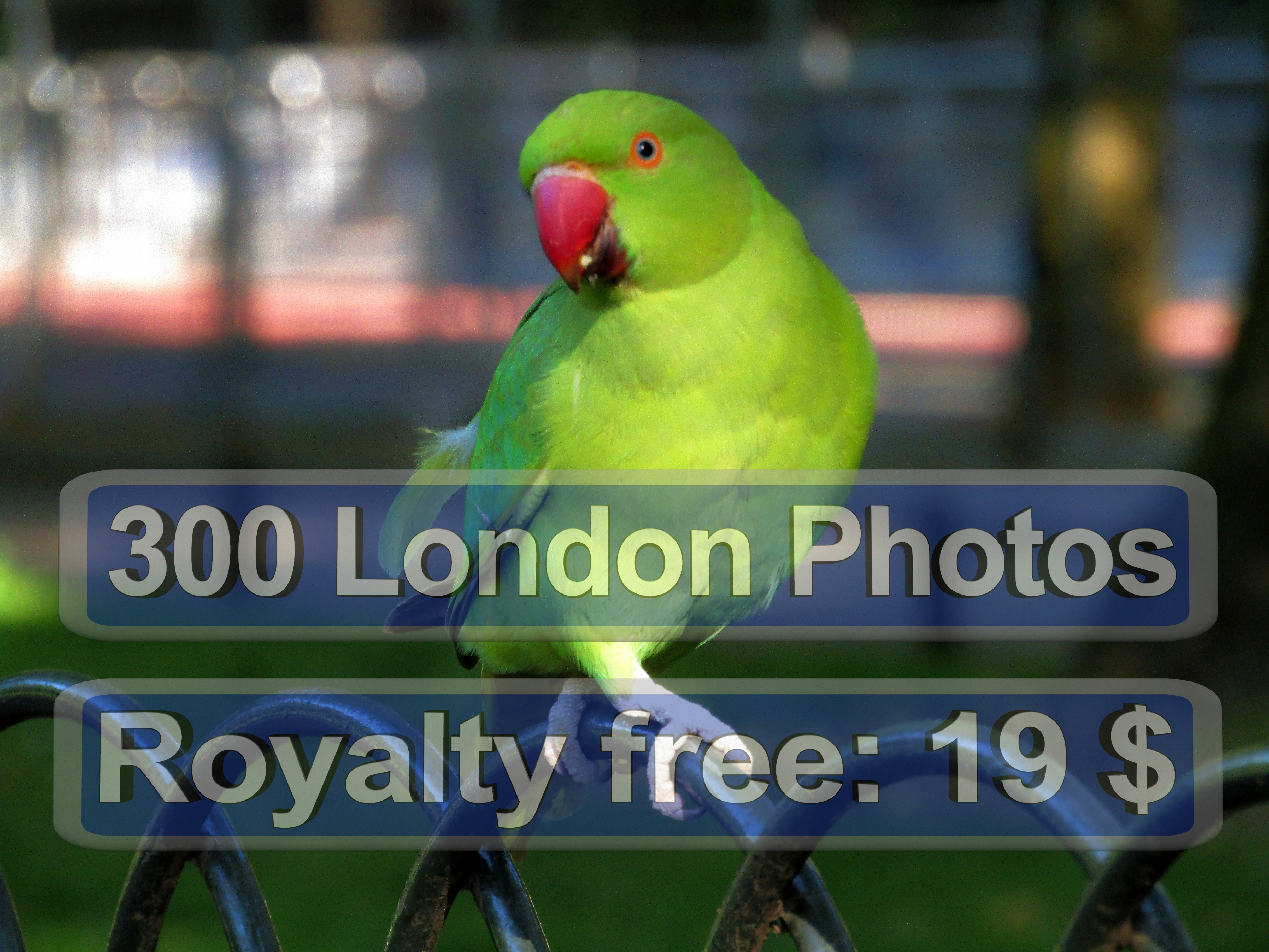 London Photo Gifts