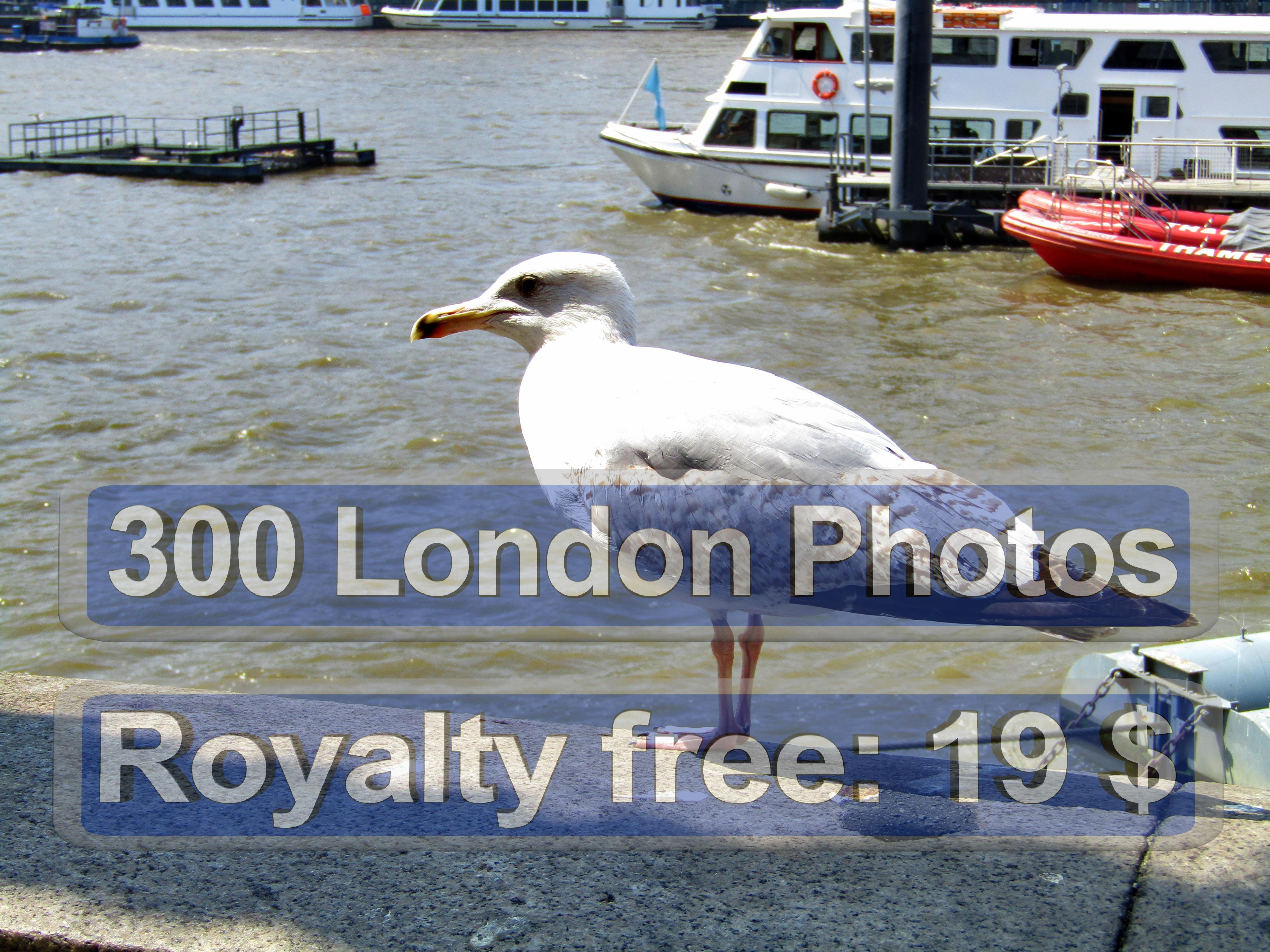 London Photo Group