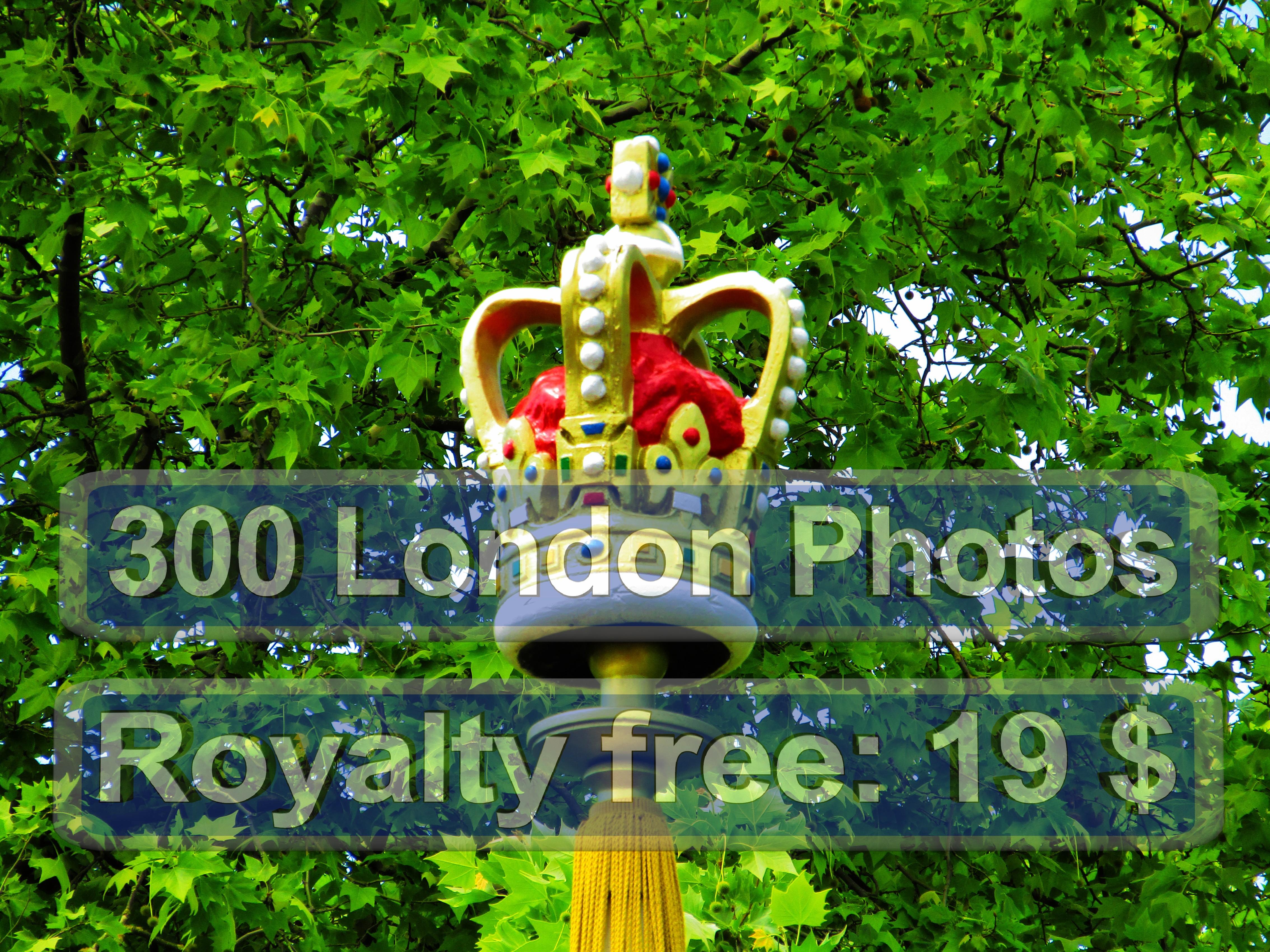 London Zoo Foto