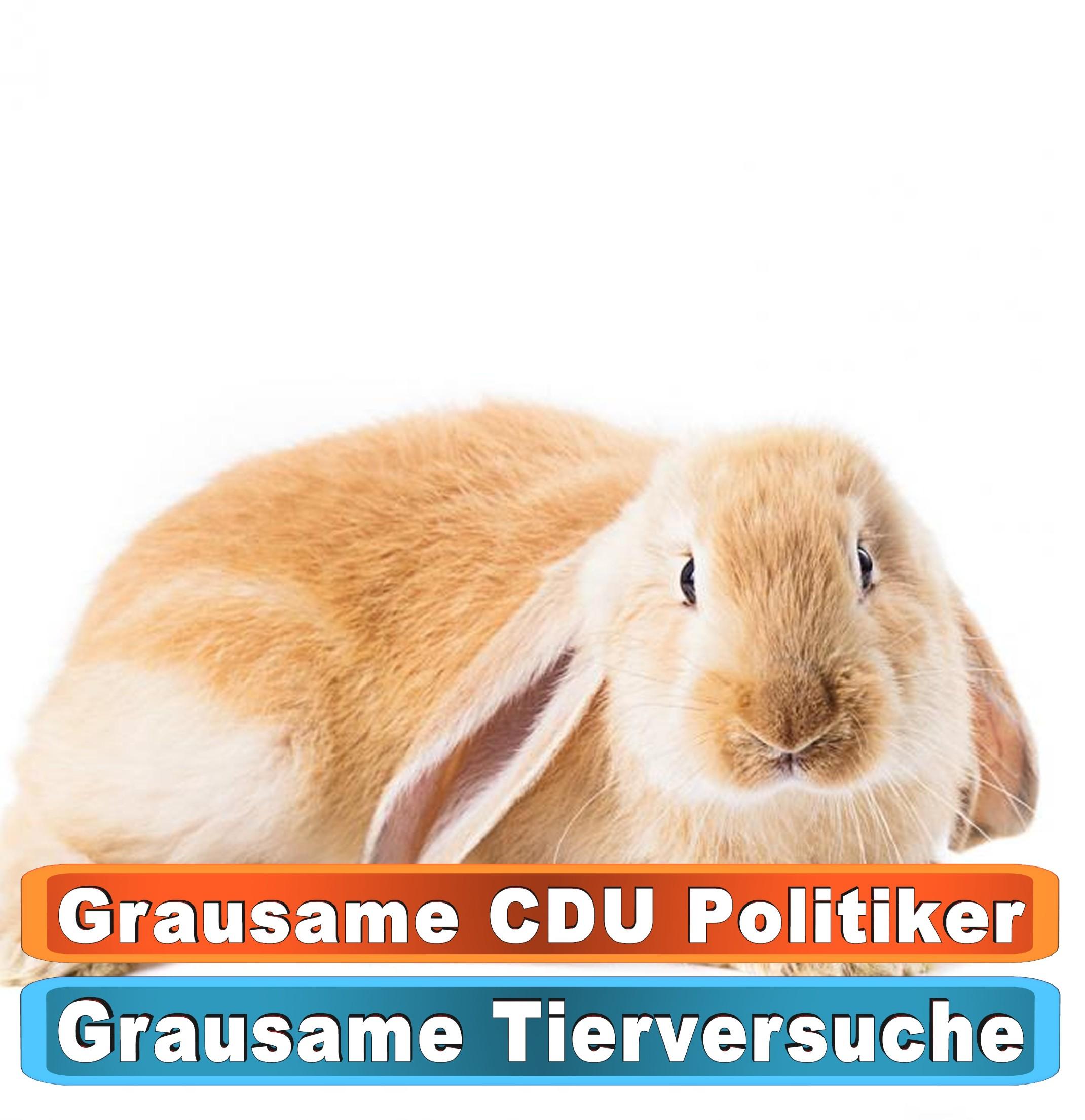 Tierhandlung Bielefeld Youtube