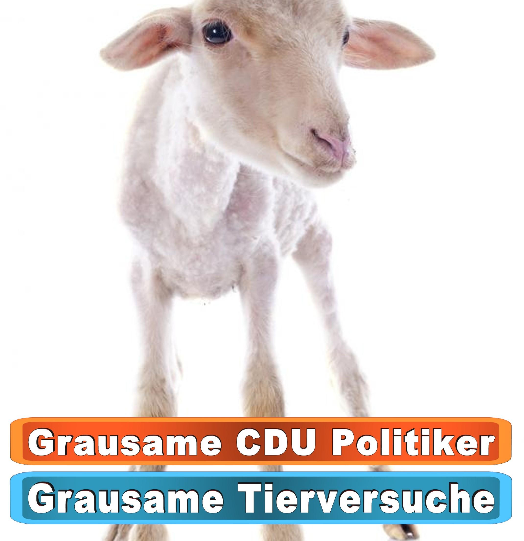 Tierhandlung Bochum Youtube
