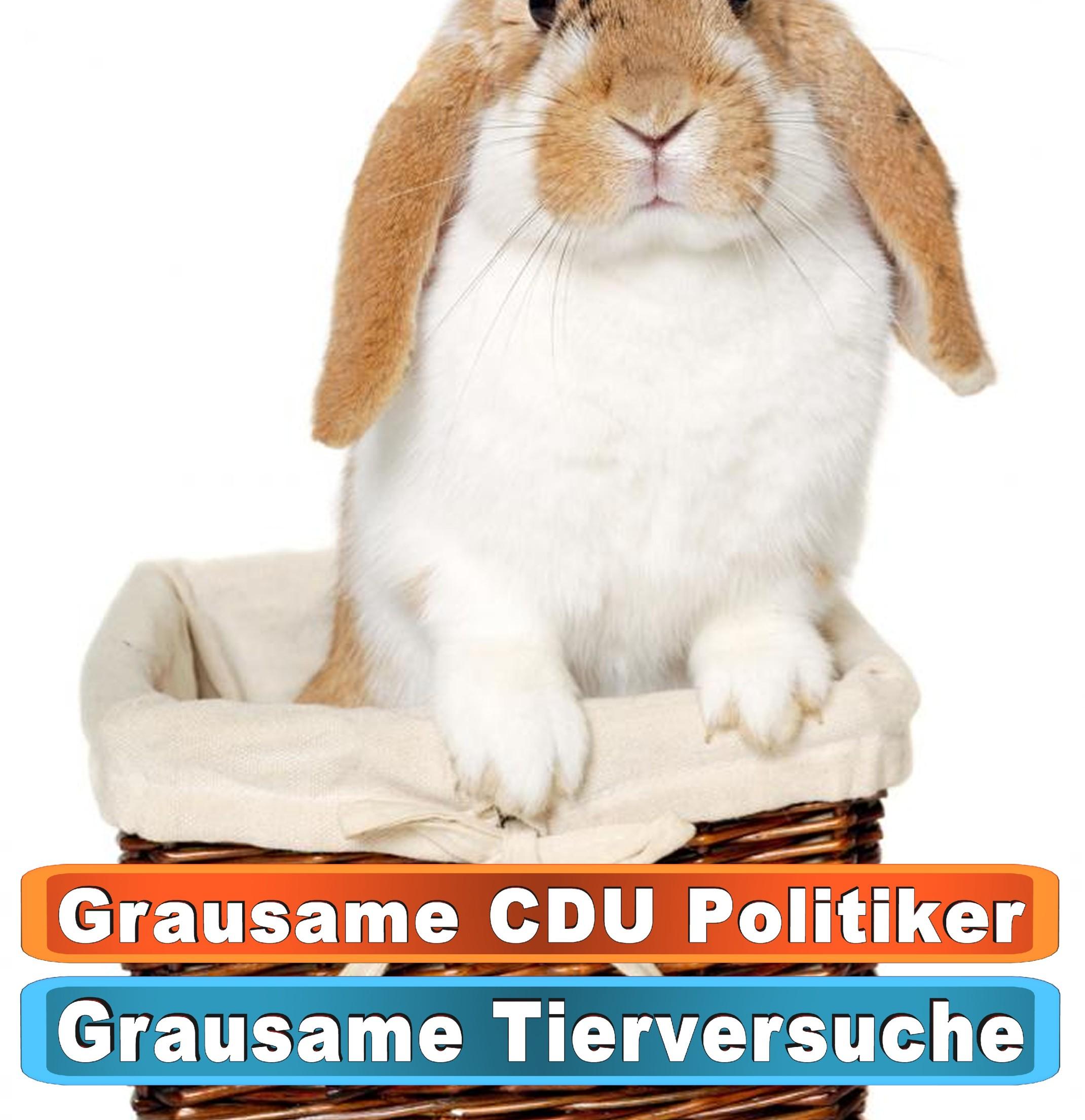 Tierhandlung Charlottenburg Bing