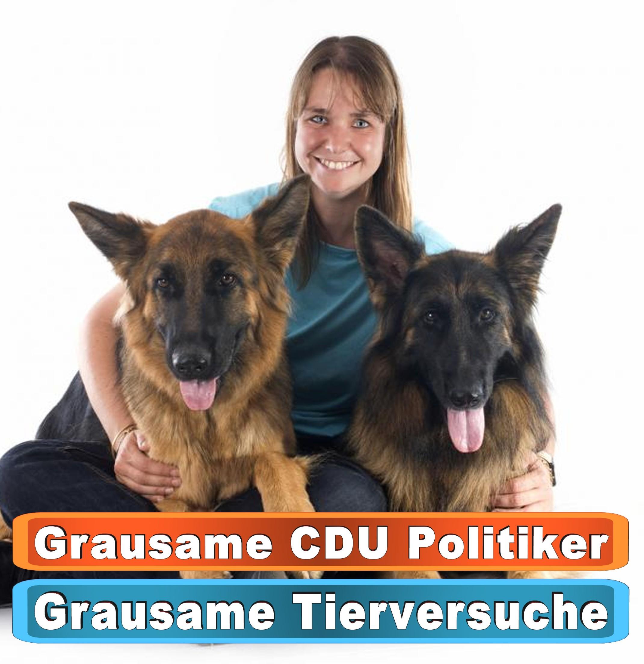 Tierhandlung Chemnitz Youtube