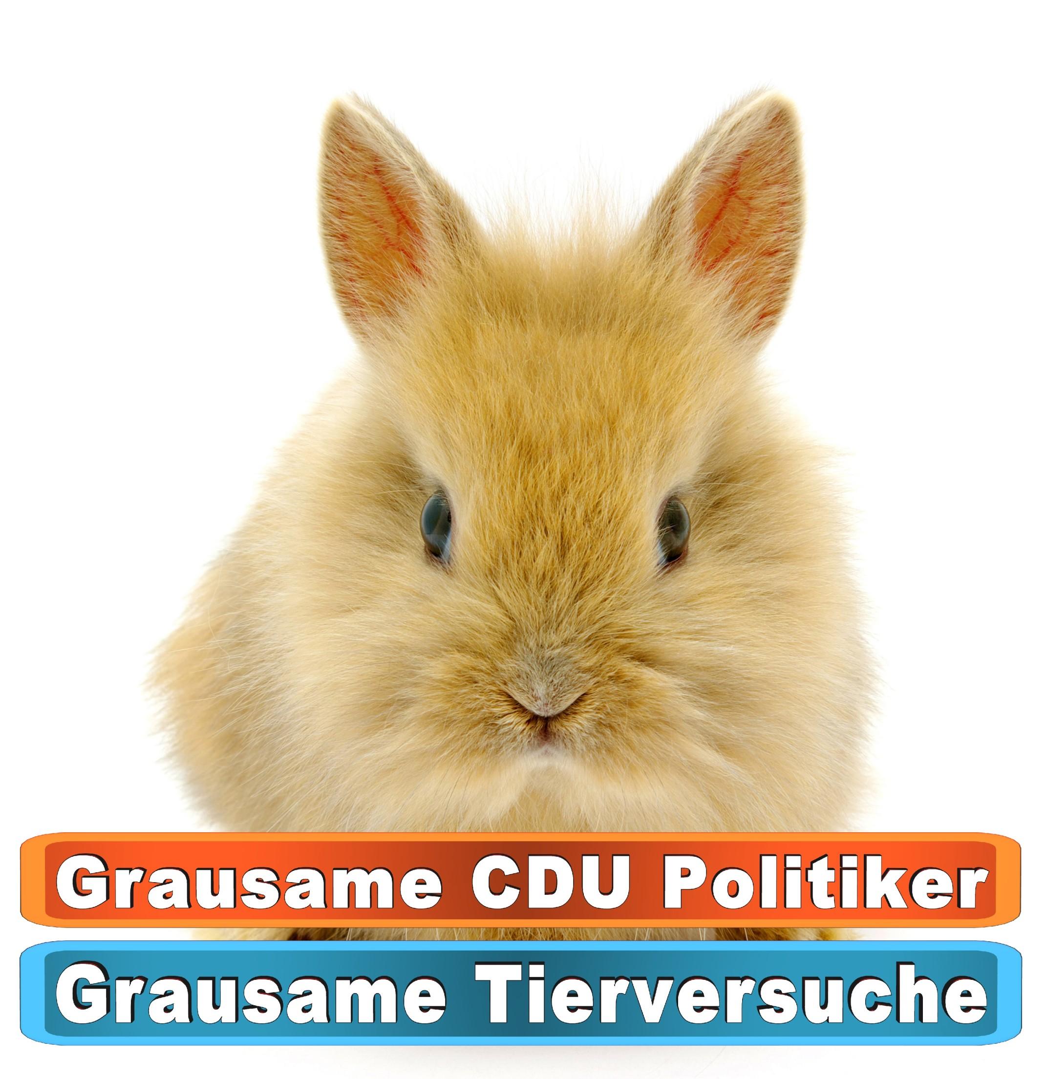Tierhandlung Dresden Youtube