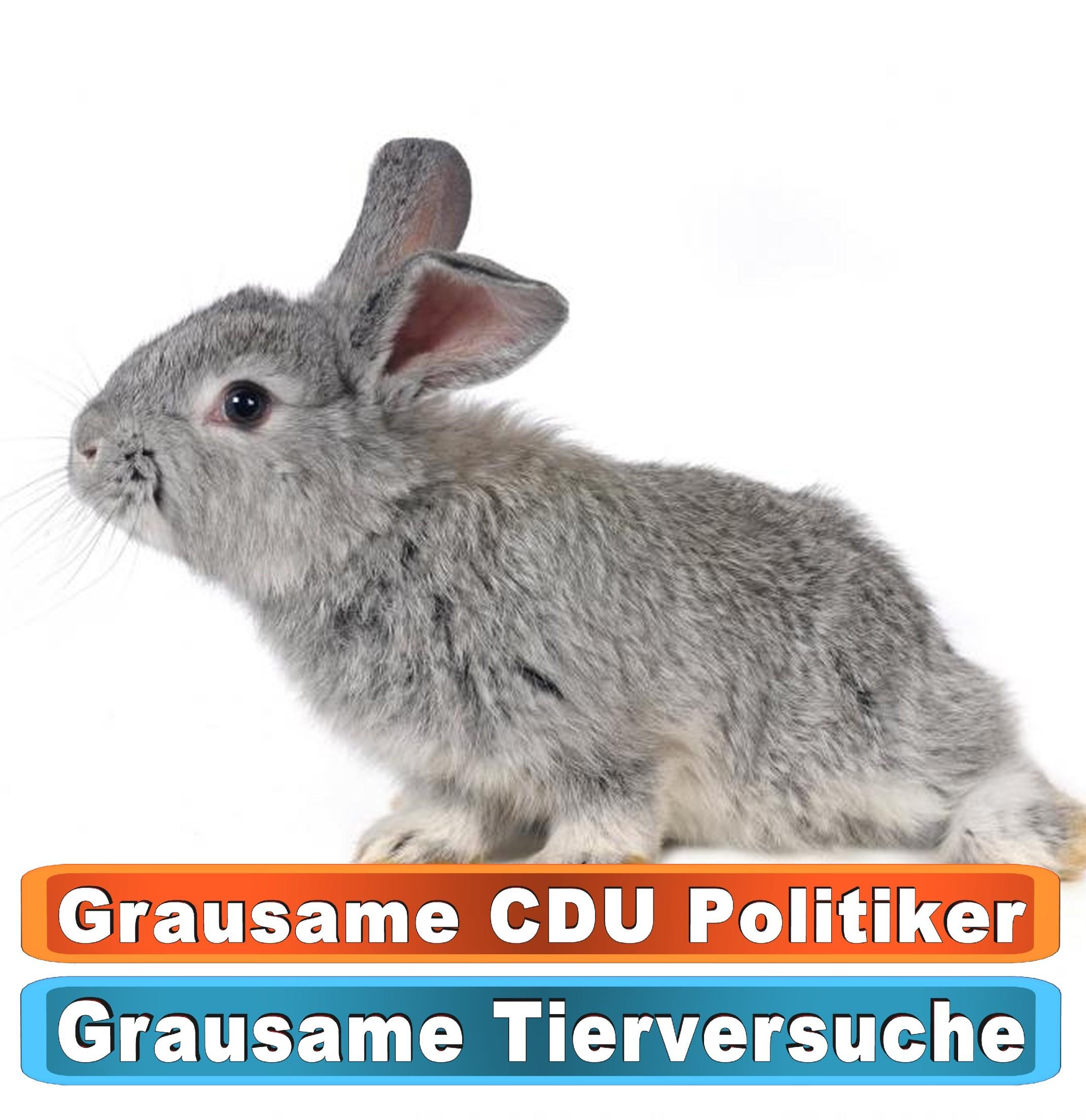 Tierhandlung Gifhorn Bing