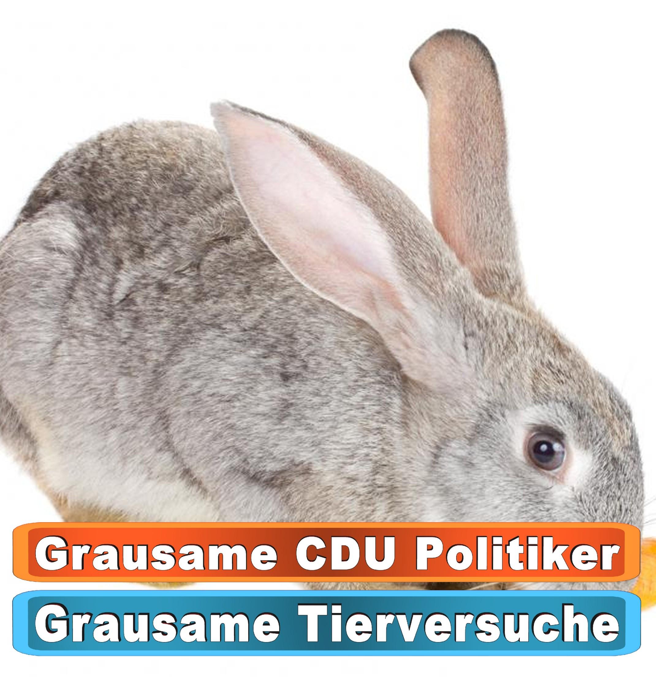 Tierhandlung Nürnberg Youtube