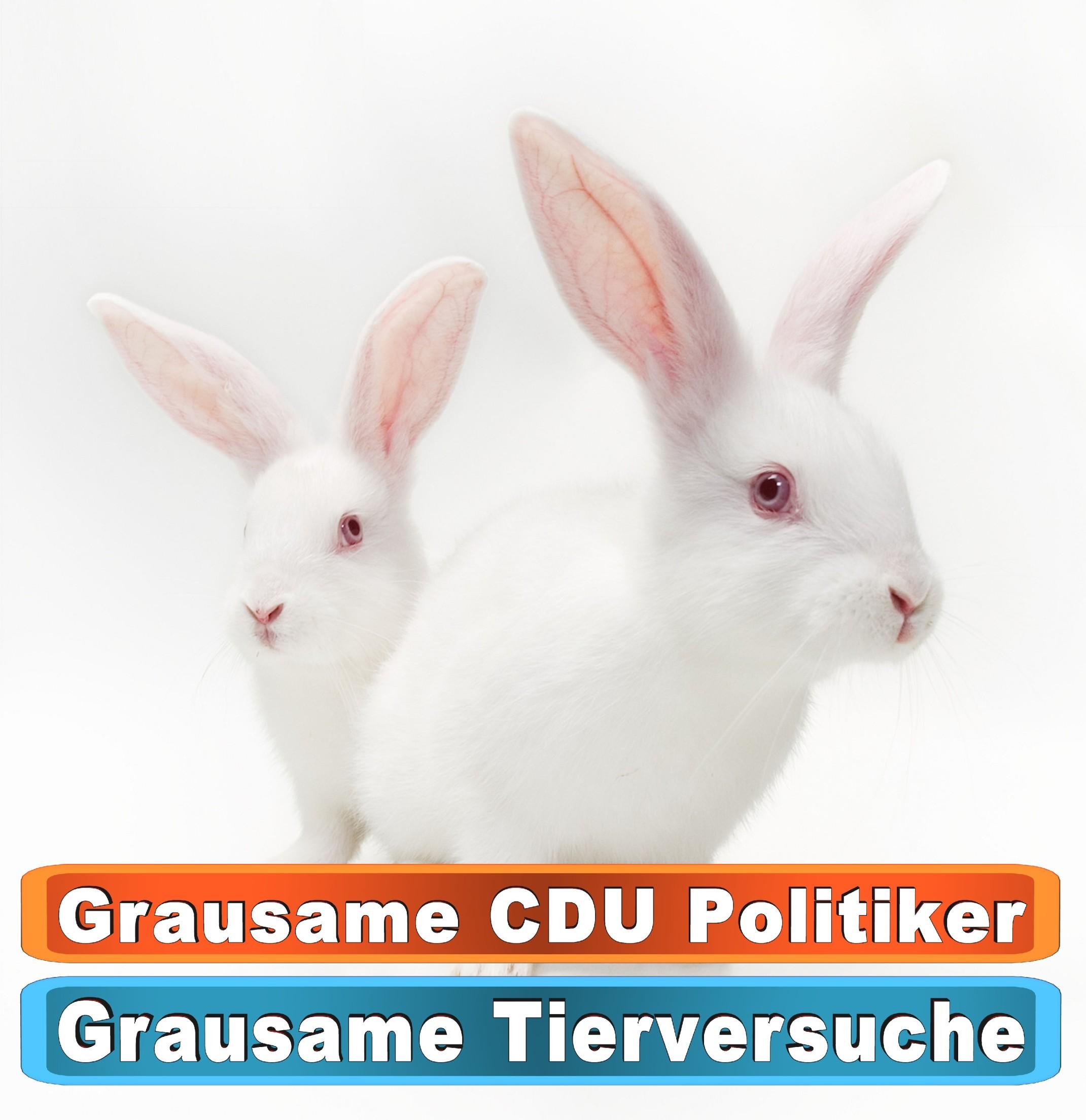 Tierhandlung Osnabrück Youtube