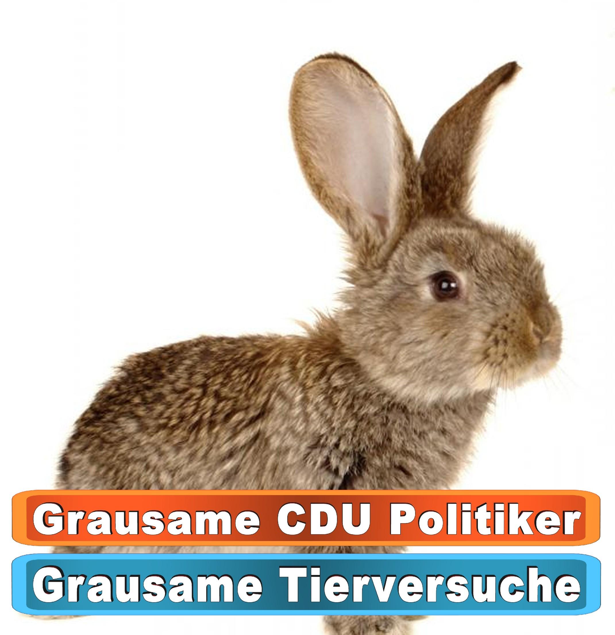 Tierhandlung Paderborn Google