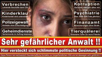 Rechtsanwalt Arne Herz Berlin CDU Berlin 1