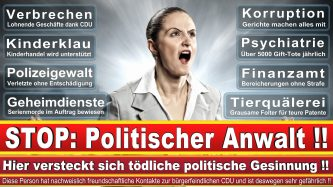 Rechtsanwalt Carsten Moll Hamburg Kanzlei CDU Hamburg