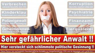 Rechtsanwalt Daniel Buljevic Hamburg Kanzlei CDU Hamburg 1