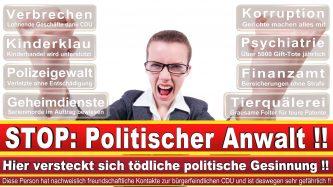 Rechtsanwalt Dr Fabian Heintze Hamburg Kanzlei CDU Hamburg