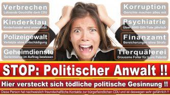 Rechtsanwalt Michael Boll Berlin CDU Berlin