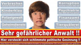 Rechtsanwalt Tankred Schipanski Berlin CDU Berlin 1
