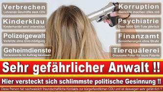 Rechtsanwalt Till Olaf Voß CDU NRW 1