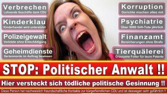 Rechtsanwalt Urban Windelen Berlin CDU Berlin